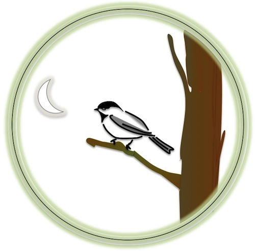 chickadee by dave