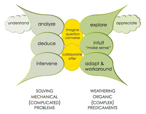 complex systems model