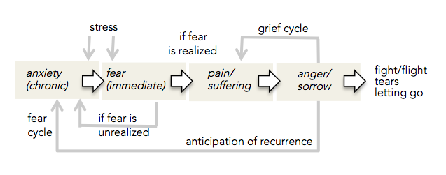 the cycle of fear essay