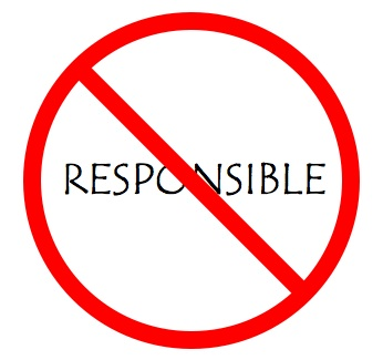 essays about responsibility madrat co essays about responsibility