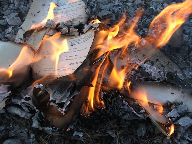 wikipedia book burning