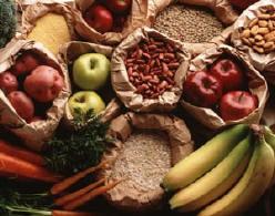 homo sapiens food diet